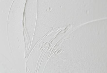 塗り壁の研究が開始された画像